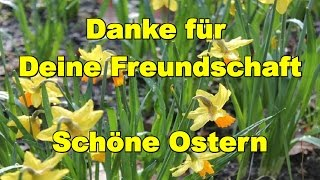 🐰🌼 Dir wünsche ich schöne Ostern, Ostertage und will Dir sagen: Schön dass es Dich gibt 🐰🌼 YouTube
