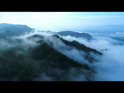 【看見・齊柏林基金會Chi Po-lin Foundation】延續未完成的夢想 - YouTube