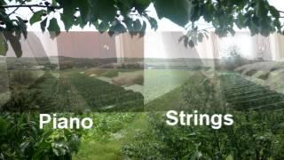 """Adrian Enescu  Love Theme Piano """"Filmu Ciuleandra"""""""