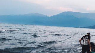 SELENA GOMEZ - WOLVES (FEAT. MARSHMELLO MUSIC )(AUDIO)