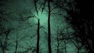 Clair de Lune Morte - Live