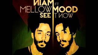 NIAM feat. Mellow Mood - See it now