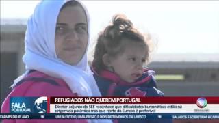 FALA PORTUGAL - Refugiados não pretendem ficar em Portugal