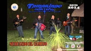 Tamarindo Norteño - Te La Pasas (En Vivo 2014)