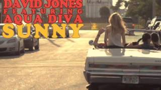 David Jones feat. Aqua Diva - Sunny (Radio Edit) [Official Lyrics Video]