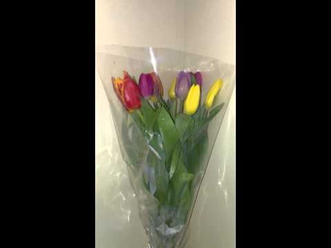 Tulips flowers delivery to Ukraine