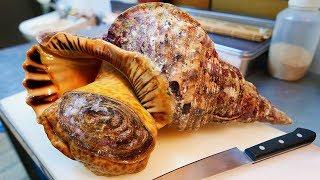 Japonské pouliční jídlo - Obrovská Ulita sashimi Okinawa plody moře Japonsko