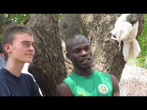 Polybel Sénégal 2011