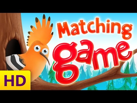 Learn Matching for Kids with Funny Birds