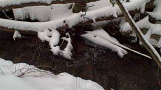 Winter Mountain Stream
