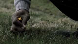 Diffe Fabien - Dje ah (Mon Chemin) - [Official Video]