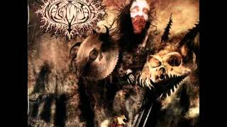 Naglfar - Unleash Hell (Lyrics)