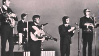 Herman's Hermits - I'm Into Something Good (Shindig)