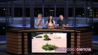 Protocolo Ciencia 08 Cambio Climático