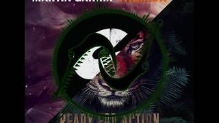 Dimitri Vegas & Like Mike , Martin Garrix - Tremor VS Ready For Action