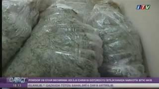 #Carçı - İstilikxanada Narkotik Bitki Əkib