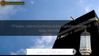Fil Suresi - Muhammad al Muqit محمد المقيط