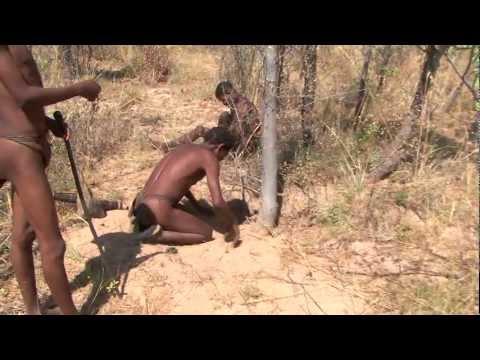 Namibia Buschman Walk