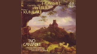 Adagio, Variationen und Rondo op. 78: I. Introduction (Cantabile)