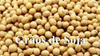 Benefícios da Soja em Grãos