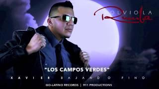LOS CAMPOS VERDES   Xavier y Bajando Fino