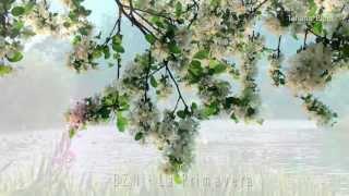 BZN - La Primavera (subtitrare romana)