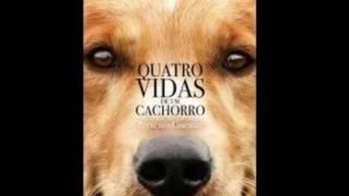 Resenha -Quatro vidas de um cachorro