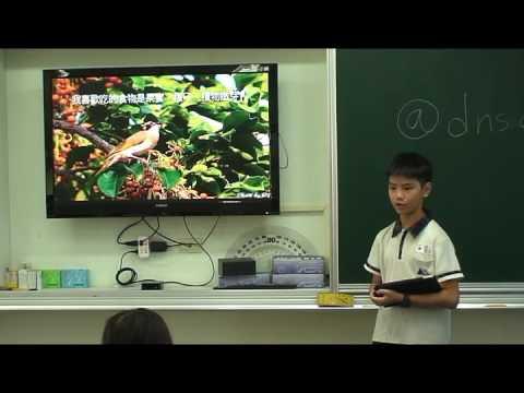 探索白頭翁 - YouTube