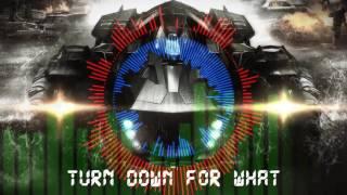 【3D環繞音樂】【耳機福利】電音turn down for what.mp4