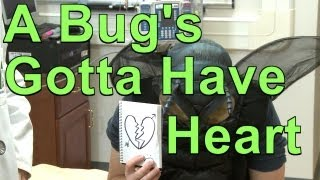 A Bug's Gotta Have Heart | A Moment of Science | PBS