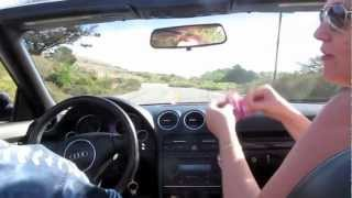 DreamCycle Real Roses Driving With The Top Down