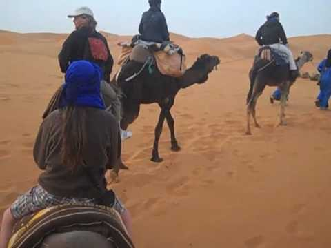 Nicholson's Camel Trek – Erg Chebbi Dunes, Sahara Desert