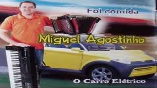 Miguel Agostinho - A marcha do prestaneiro