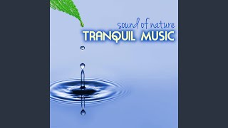 The Joy of Spring, the Heat of Summer - Equinox Music 432Hz