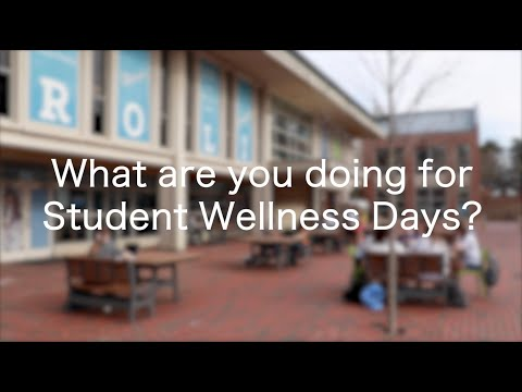 UNC students share how they plan to spend their wellness days. Video by Isaiah Dickerson and Sarah Choi.