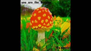 you_are_the_Buddha - fly agaric