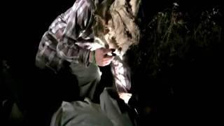 Horror Scene for Audio Edit-MPEG-4 .mp4