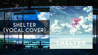 Shelter - Porter Robinson & Madeon (Vocal Cover)