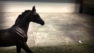"""Safe & Sound (feat. The Civil Wars) BREYER MUSIC VIDEO FOR lovehorseback!!!"