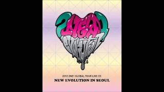 2ne1 - 12 - Hate You - Global Tour Live CD New Evolution In Seoul