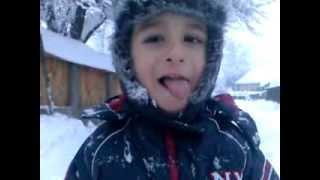 denis iarna 2014