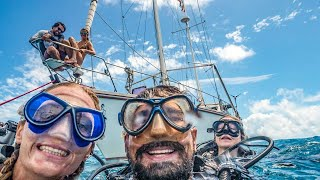 Ocean Conservation, Turtles and SHIP WRECKS! Sailing Vessel Delos Ep.185 width=