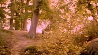 Enya - The Celts (Os Celtas) - 1992