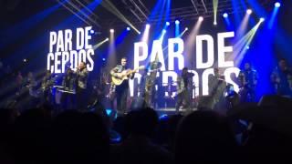 Un Par De Cerdos- Banda La Trakalosa de Monterrey