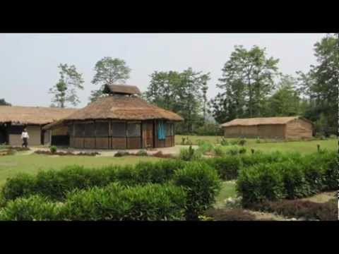 Nepal Chitwan Golaghat Resort Nepal Hotels Nepal Travel Ecotourism Travel To Care
