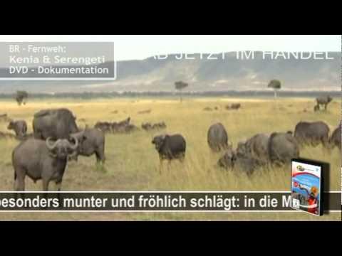 BR – Fernweh Kenia & Serengeti – ZYXDVD