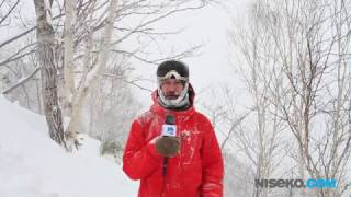 Niseko Snow Report - 2017 01 13