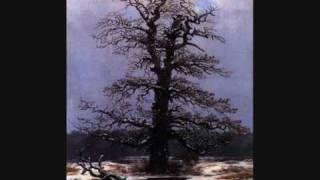 """Schubert - Winterreise - """"Einsamkeit"""", Hans Hotter"""