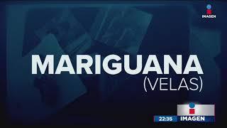 Estos son los tipos de droga que se venden en C.U.   Noticias con Ciro Gómez Leyva