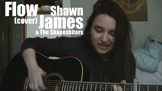 Flow - Shawn James & The Shapeshifters (Cover)